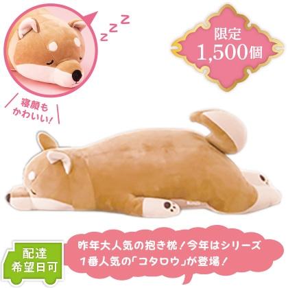 ねむねむ抱き枕 柴犬のコタロウ