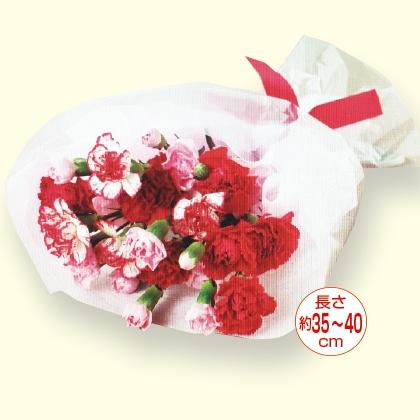 母の日花束(カーネーション5本)