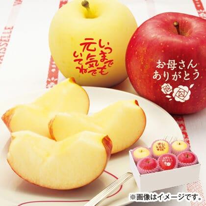 メッセージ入り白雪富士(R)と赤い富士りんご