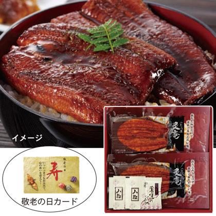 うなぎ蒲焼ハーフカット(レンジで簡単調理A)