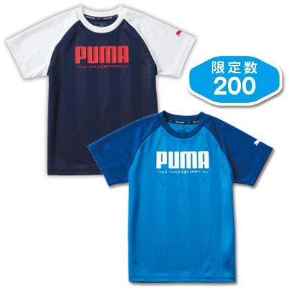 PUMA ジュニアTシャツ2枚組 140cm