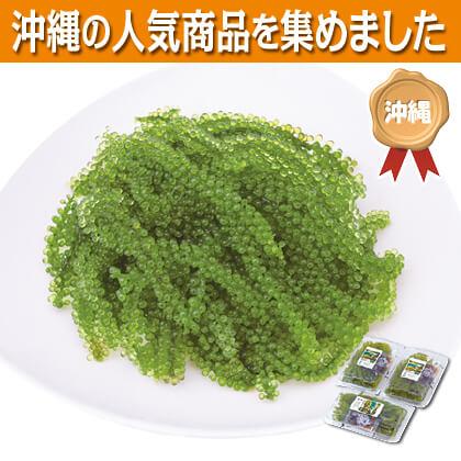 沖縄海ぶどうセット