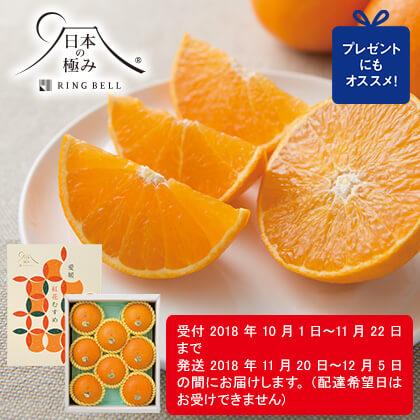 [日本の極み]愛媛県産 紅花むすめ