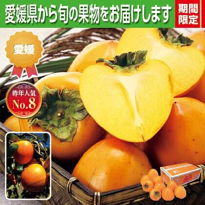 富士柿4kg