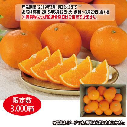 香川県産 清見