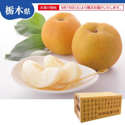 阿部梨園の梨 小箱