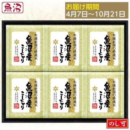 魚沼コシヒカリ300g×6