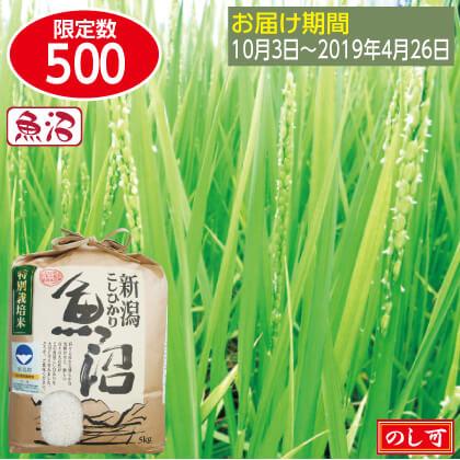 魚沼コシヒカリ特栽米5kg×2