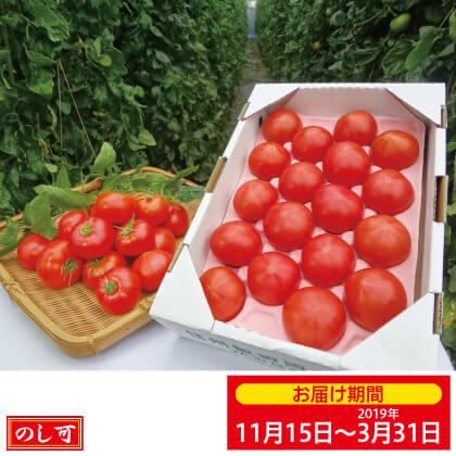 信州 いなっこトマト