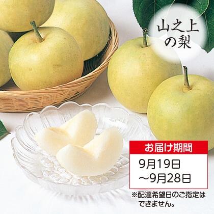 二十世紀梨 3kg