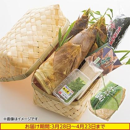 大阪 木積(こつみ)筍