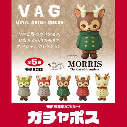 VAG MORRIS(限定カラー)
