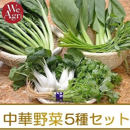 [定期購入]中華野菜 5種セット