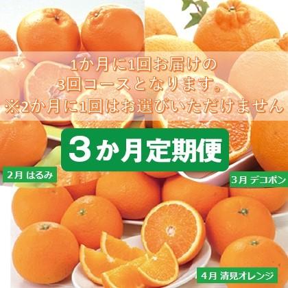 清見ファミリー定期便(3回コース)