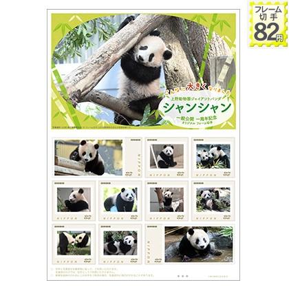 上野動物園 ジャイアントパンダ シャンシャン一般公開一周年記念