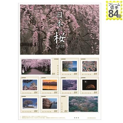 日本の桜 2020