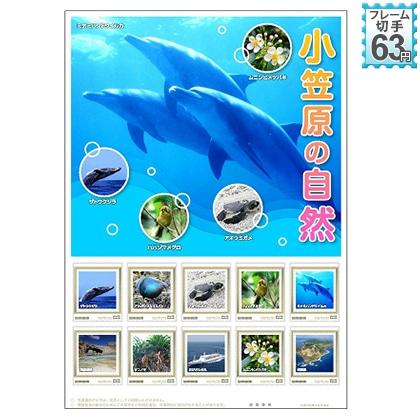 小笠原の自然