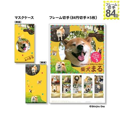 柴犬まる 3
