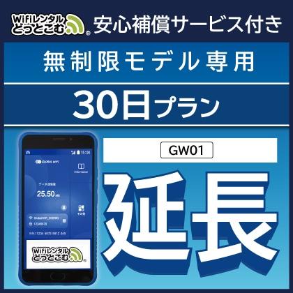 延長専用 GW01 無制限 トリプルエリア対応 30日間レンタル補償付きプラン