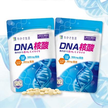 DNA核酸 2袋セット