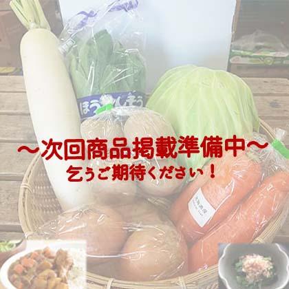 【プロ厳選】秋の旬野菜セット(6品目)
