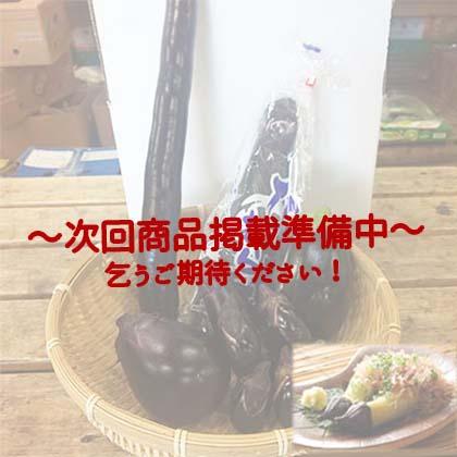 【プロ厳選】秋の旬ナス食べ比べセット(6品目)