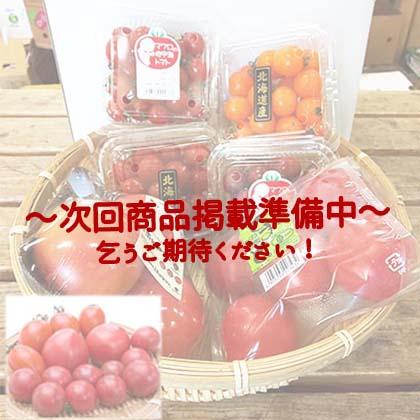 【プロ厳選】旬のトマトたっぷり食べ比べセット(6品目)