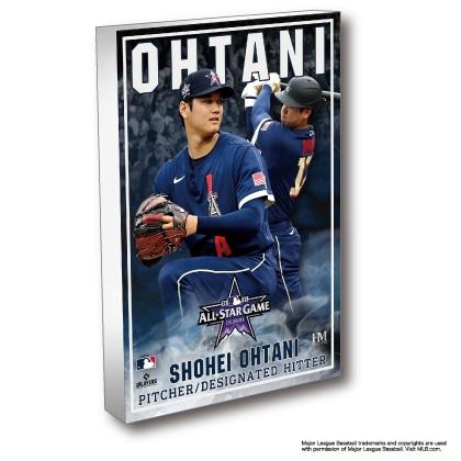 Shohei Ohtani BlocKart(ブロックアート)