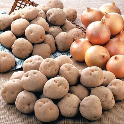 北の大地の実りセット 男爵芋 キタアカリ たまねぎ 各3.0kg
