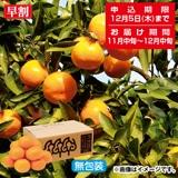 段々畑の贈り物 西宇和産おひさまみかん2.5kg