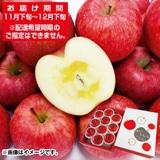 青森県産蜜入りサンふじ2.5kg