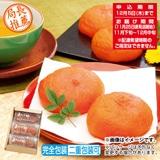 萩原フルーツ農園のあんぽ柿A