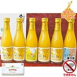 愛媛県産柑橘100%ジュース3種セット