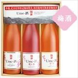 濱田 紀州石神Ume-酒セット/酒(アルコール24%以下)