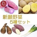[定期購入]新顔野菜 5種セット