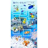 海のいきものシリーズ第4集